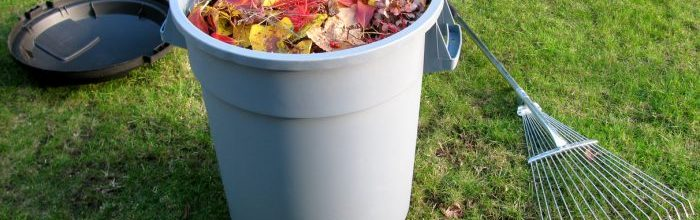 Frolic into Fall: Fall Maintenance Tips for Homeowners