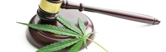 Home-Grown Issues:  The impacts of home-grown marijuana and legalization